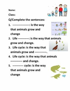 Interactive worksheet Life cycle