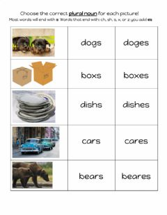 Interactive worksheet Plural Nouns s and es