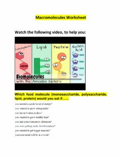 Interactive worksheet Macromolecules