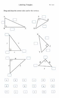 Interactive worksheet Labelling the sides and vertices of triangles