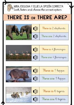 Interactive worksheet There is there are JUNGLE ANIMALS