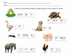 Interactive worksheet Fitxes cicle inicial