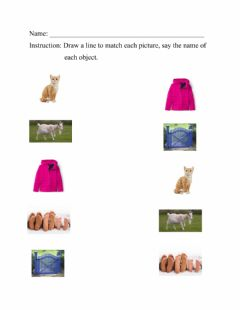 Interactive worksheet Match the pictures
