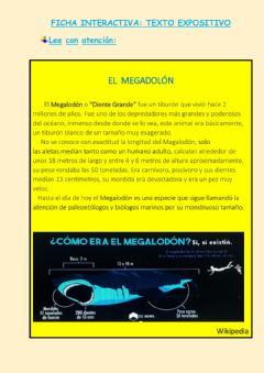 Interactive worksheet Texto Expositivo