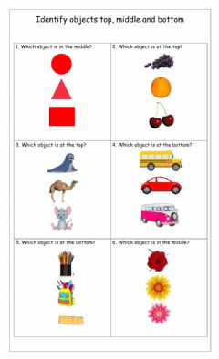 Interactive worksheet TOP, MIDDLE, BOTTOM