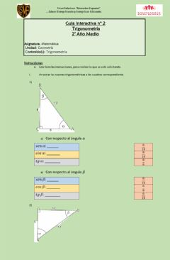 Interactive worksheet Guia 2 trignometria