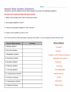 Interactive worksheet Human body systems test