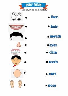 Interactive worksheet Body Parts - My Face