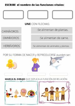 Interactive worksheet Funciones vitales