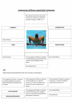 Interactive worksheet Components of fitness - sporting examples