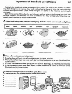 Interactive worksheet Importance of Bread and Cereal Group