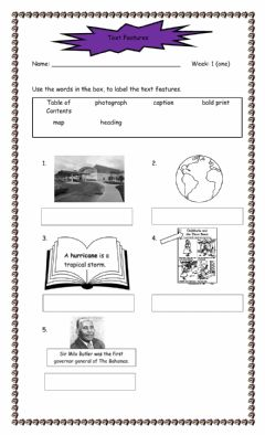 Interactive worksheet Text Features - Reading