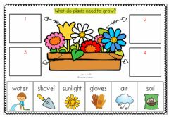Interactive worksheet What do plants need to grow?