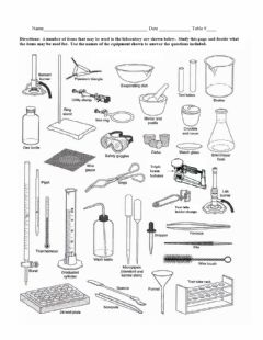 Interactive worksheet Lab equipment worksheet