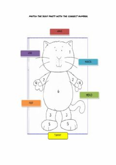 Interactive worksheet Body cookie and friends