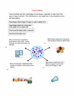 Interactive worksheet Food Safety