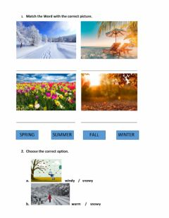Interactive worksheet The weather and seasons