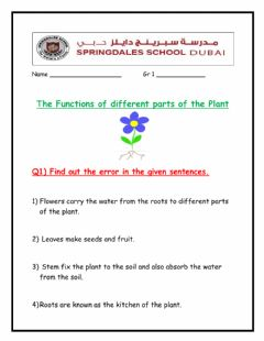 Ficha interactiva The Functions of Different parts of the Plant