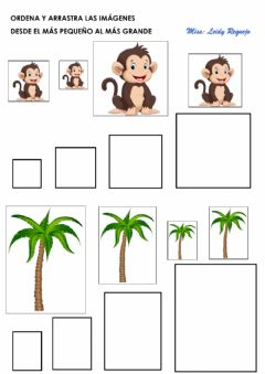 Interactive worksheet Series: Tamaño