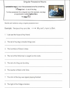 Interactive worksheet Singular Possessive Nouns