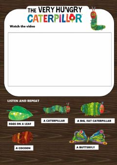 Ficha interactiva The very hungry caterpillar