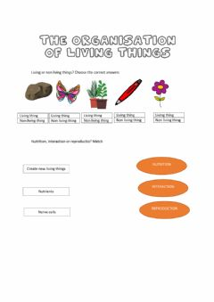 Ficha interactiva The organisation of living things