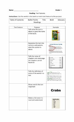 Interactive worksheet Text Features
