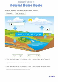 Interactive worksheet Natural Water Cycle