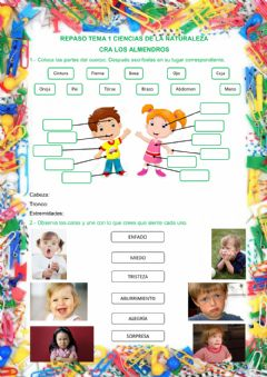 Interactive worksheet Repaso Naturales tema 1