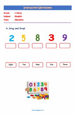 Interactive worksheet English Interactive Worksheet about Numbers