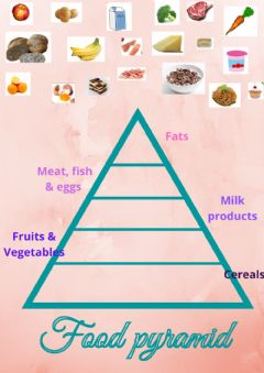 Interactive worksheet Food pyramid