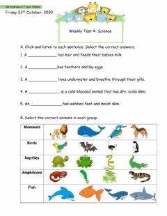Interactive worksheet Vertebrates Test