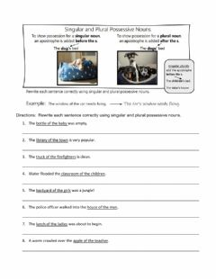 Interactive worksheet Singular and Plural Possessive Nouns