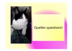 Interactive worksheet Quelles questions!