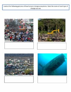 Interactive worksheet Human changes to ecosystems