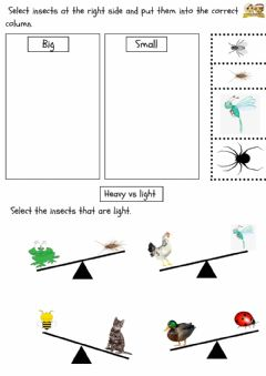 Interactive worksheet Math : Comparison (Size and heavy)