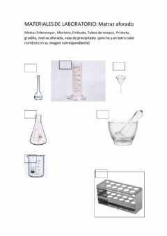 Interactive worksheet Materiales de laboratorio