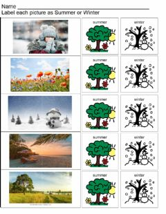 Interactive worksheet Summer or Winter