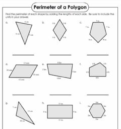Interactive worksheet Finding Perimeter