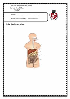 Interactive worksheet Hello , my name is Mohamed i'd love to learn more and more