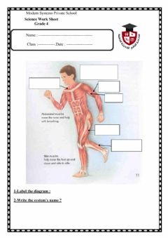Interactive worksheet Hello , my name is Mohamed Esmael --science teacher