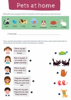 Interactive worksheet Read and match - Pets