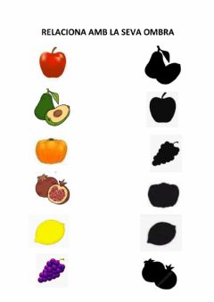 Interactive worksheet Fruits de la tardor
