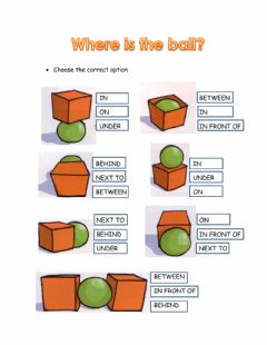 Interactive worksheet Where is the ball?