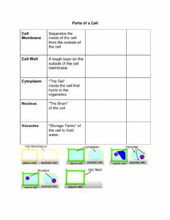 Interactive worksheet Parts of a Cell