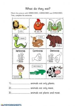 Interactive worksheet Types of Consumers in Food Chain