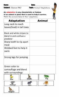 Interactive worksheet Animal Adaptations