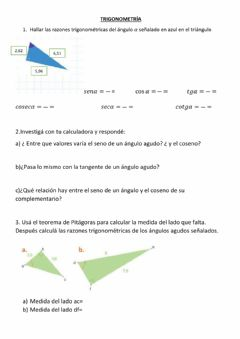 Interactive worksheet Trigonometría