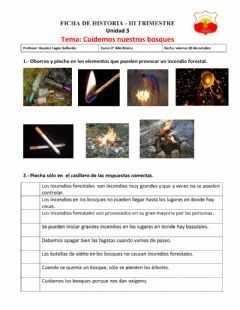 Interactive worksheet Los incendios forestales