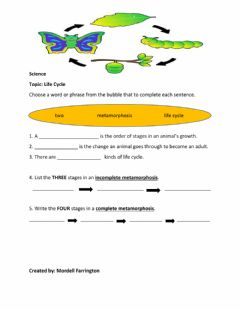 Interactive worksheet Life Cycles